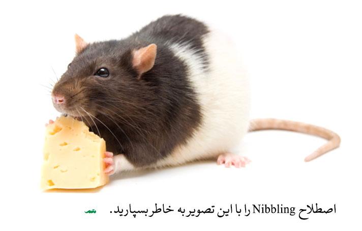 استراتژی کالباسی در مذاکره از اصطلاح Nibbling که به معنای جویدن است گرفته شده